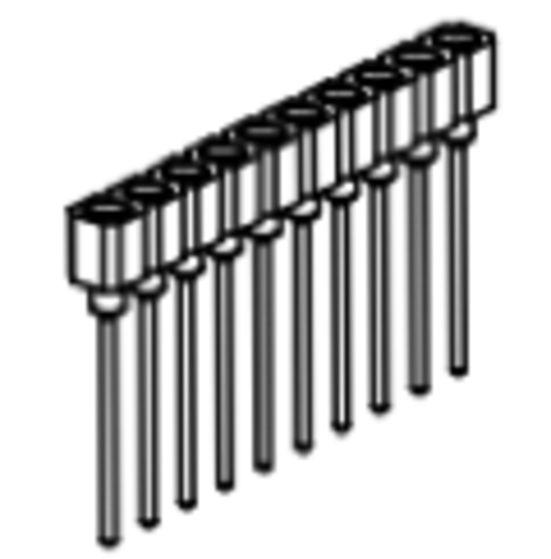 Produkt Nr. BP254117 (2.54 mm Pitch; THT)